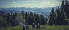 Studieren in Österreich