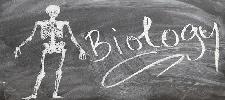 Biologie Studium: Voraussetzungen, Inhalte und Berufsaussichten