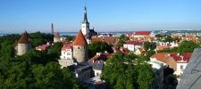 Studieren in Estland
